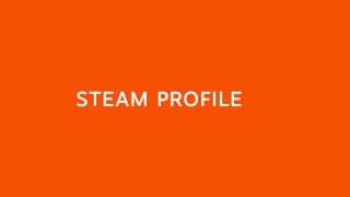 Steam Profile