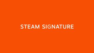 Steam Signature